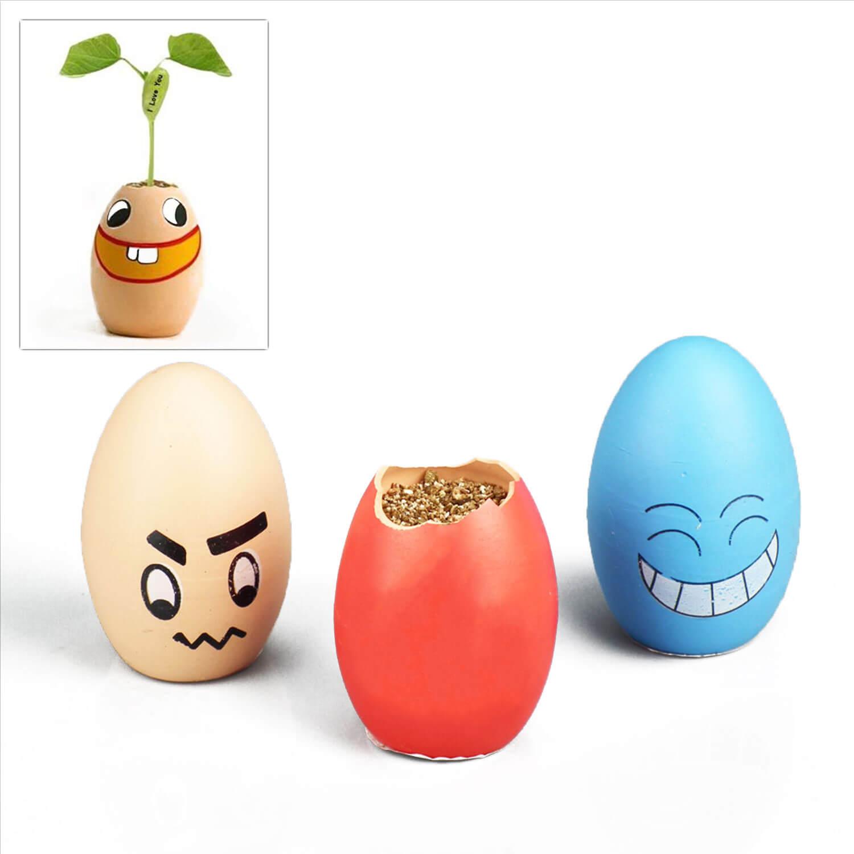 sihirli-yumurta-deneyimi