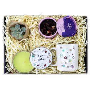 mini-dogum-gunu-hediyesi