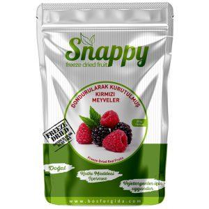 Dondurularak Kurutulmuş Kırmızı Meyveler - Snappy